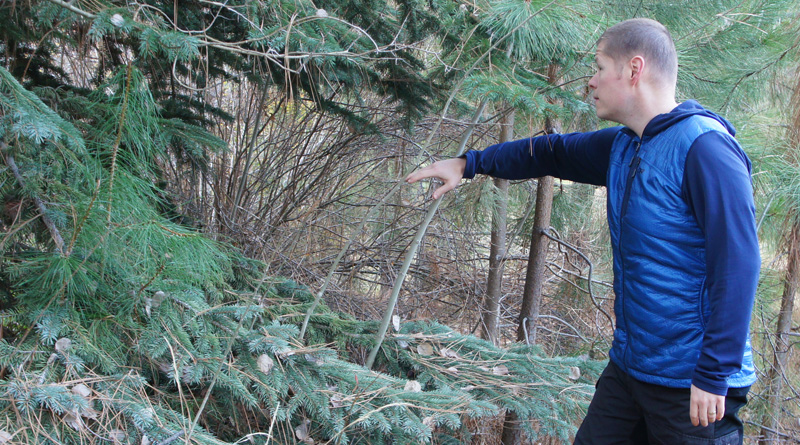 Outdoor Research Deviator Hoody review